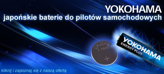Baterie do pilotów samochodowych Płock.